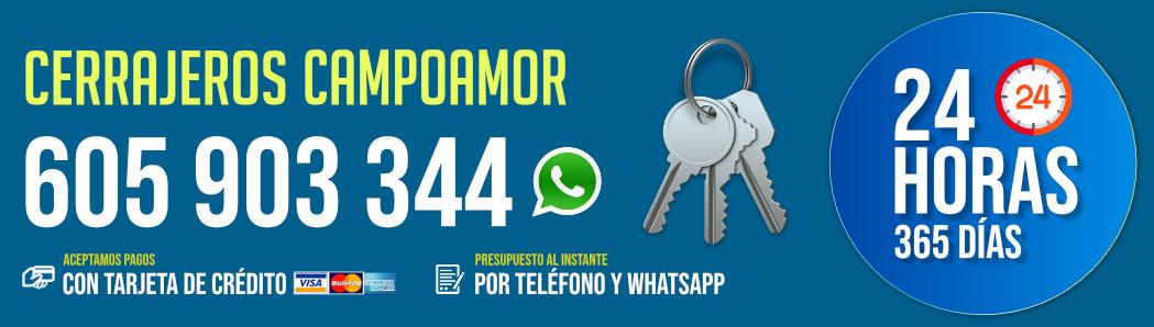 Cerrajeros Campoamor 8